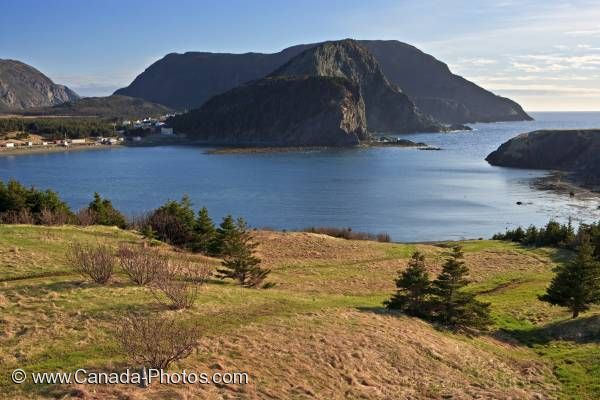 Photo: Bottle Cove Little Port Newfoundland