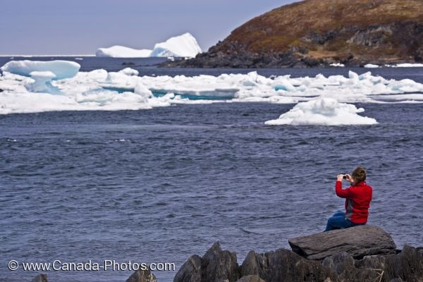 Photo: Coastline Iceberg Watching Newfoundland Town
