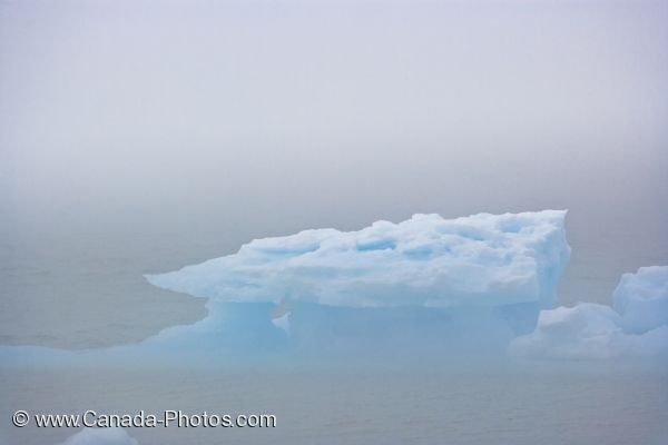 Photo: Foggy Pack Ice Belle Isle Strait Newfoundland