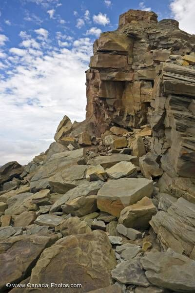 Photo: Fossil Cliffs Geology Joggins Nova Scotia