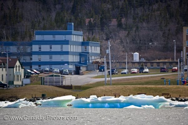 Photo: Harbour Ice St Anthony Newfoundland