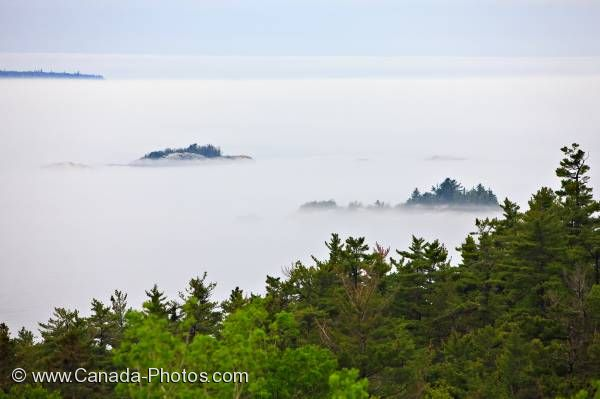 Photo: Fog Shrouded Lake Superior Forest Ontario