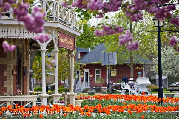 Photo: Niagara On The Lake Spring Flowers Ontario Canada