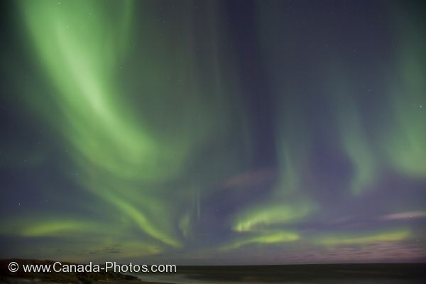 Photo: Northern Lights Display Churchill Manitoba