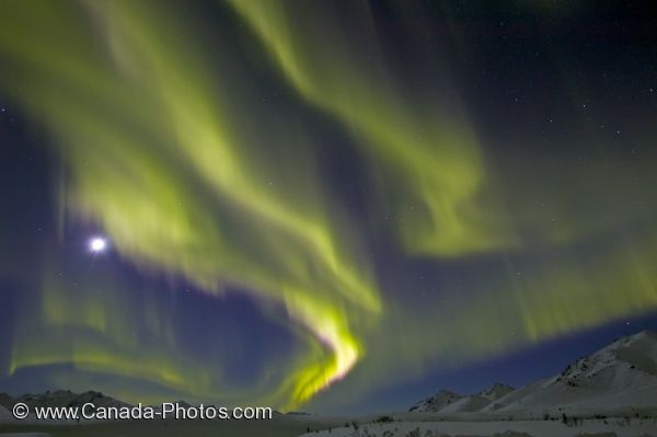 Photo: Beautiful Northern Lights Moon Yukon