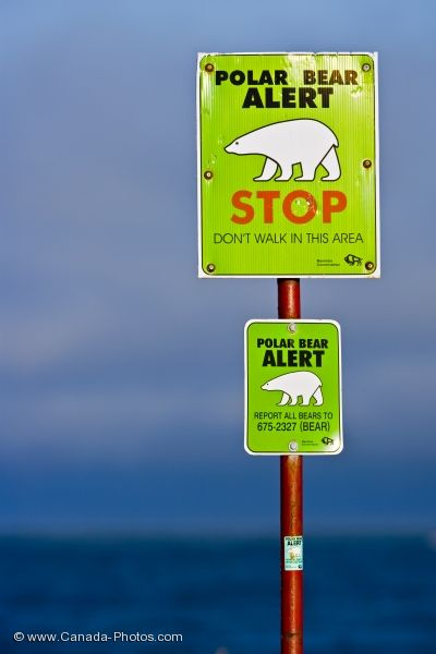 Photo: Polar Bear Sign Hudson Bay Manitoba