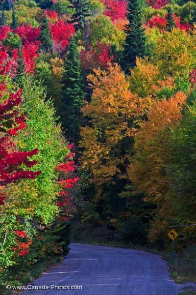 Photo: Quebec Provincial Park Fall Colors Picture
