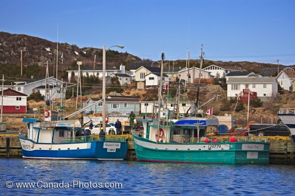 Photo: Saltwater Fishing Boats Newfoundland