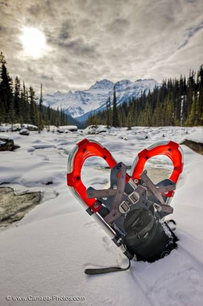 Photo: Red Snow Shoes Mistaya Canyon Cloudy Winter Day