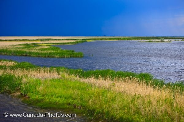 Photo: Teal Cell Oak Hammock Marsh Interpretive Centre Manitoba Canada