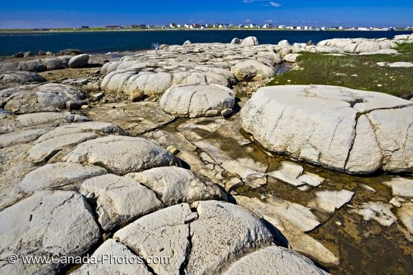 Photo: Thrombolites Newfoundland