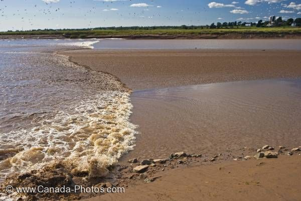 Photo: Tidal Bore Salmon River Truro Nova Scotia
