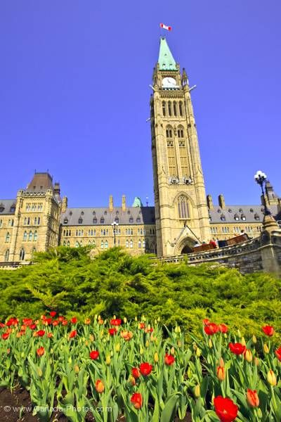 Photo: Parliament Buildings Tulip Garden Parliament Hill City of Ottawa