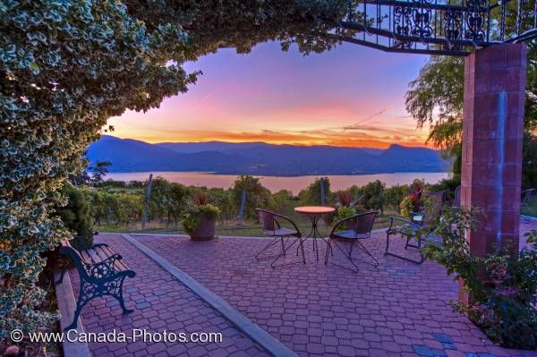 Photo: Okanagan Lake Vineyard Scenic Sunset