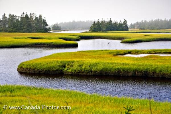 Photo: Water Channels Cape Sable Island Nova Scotia