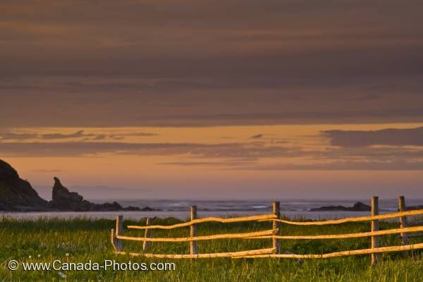 Photo: Wooden Fence Coastline Sunset Newfoundland